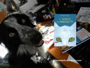 Il nuovo libro della Umi!